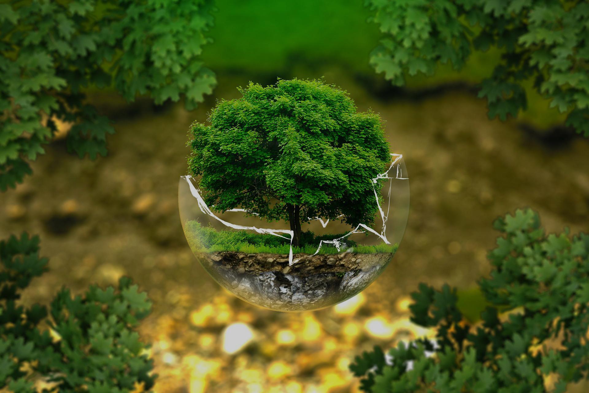 환경과 에너지를 생각하는 에네트
